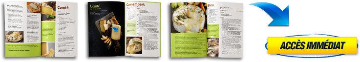 Comment faire des recettes de faux-mage vegan grâce à ce livre